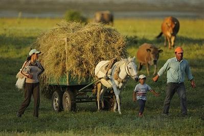 albanian_farming_mid.jpg